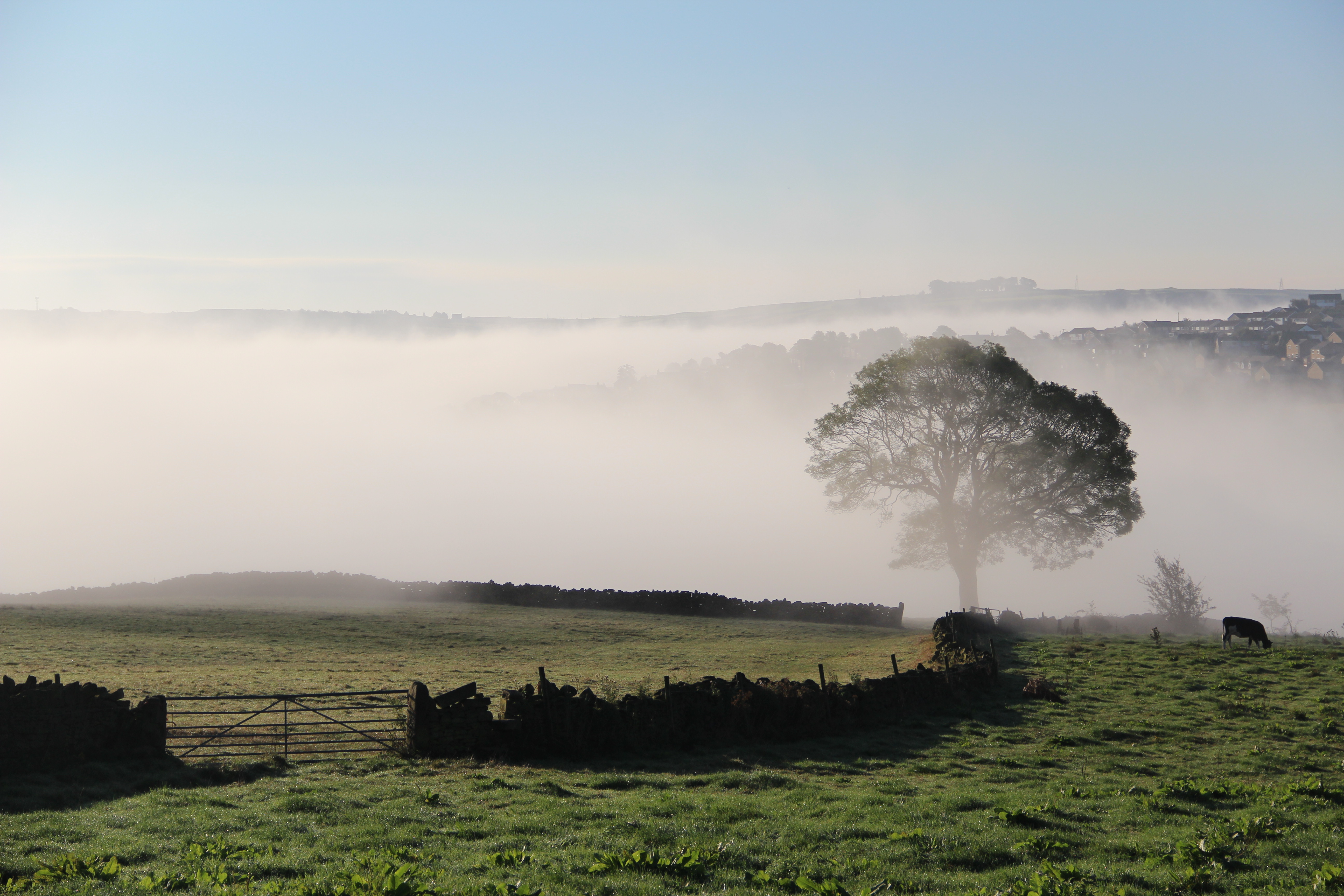 Low cloud in North Beck